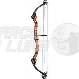 Arco Mathews Conquest 4